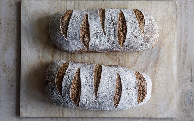 לחם מחמצת (צילום: דן פרץ)