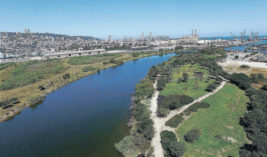 פארק מורד נחל הקישון (צילום: דב גרינבלט)