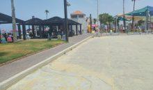 חוף נאות (צילום: אלה אהרונוב)