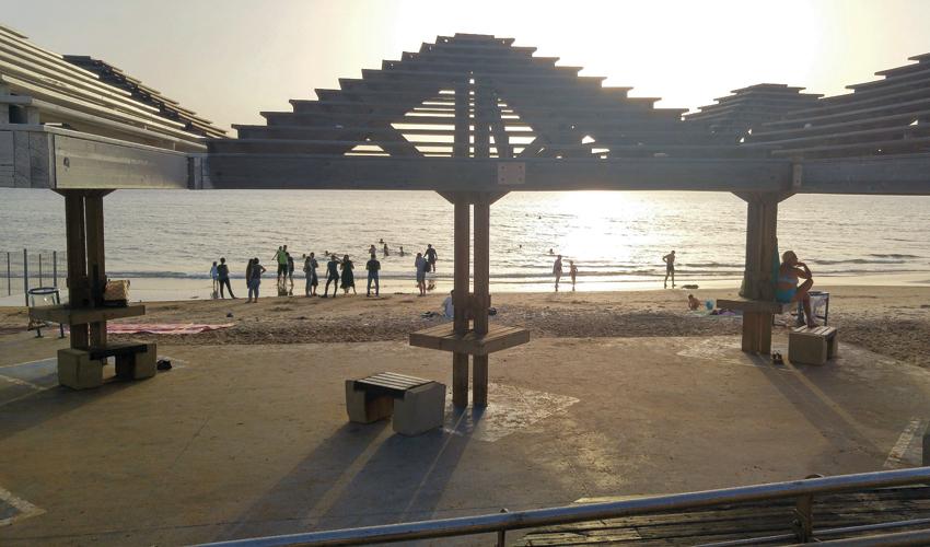 חוף זמיר (צילום: אלה אהרונוב)
