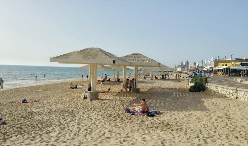 חוף דדו (צילום: אלה אהרונוב)