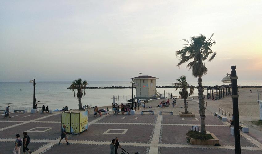 חוף הכרמל (צילום: אלה אהרונוב)