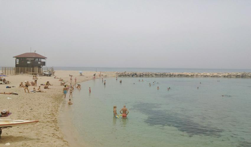 חוף בת גלים (צילום: אלה אהרונוב)