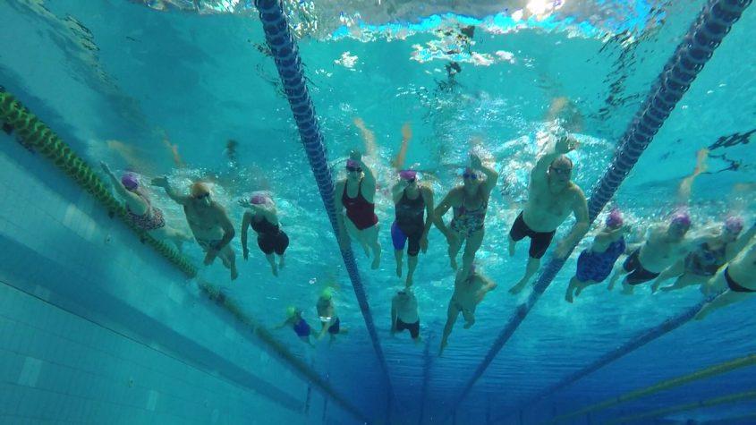 כל שחייני עולם המים יוצאים ביחד צילום תת מימי. Moment