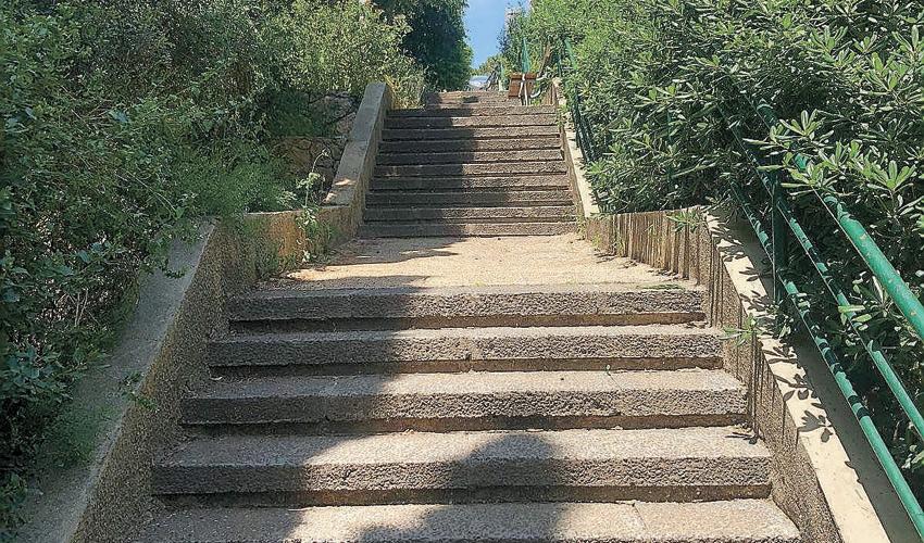 מדרגות חולדה