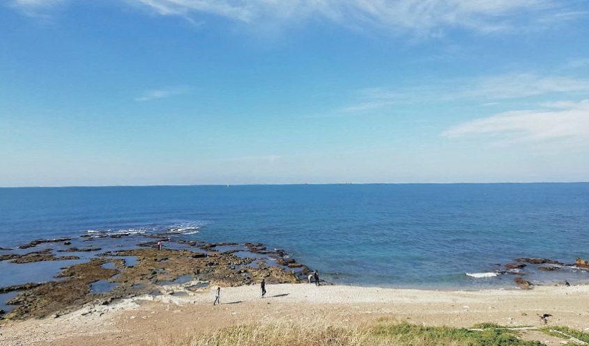 חלק מהשטח המיועד לשמורת הטבע הימית ראש כרמל (צילום: אלה אהרונוב)