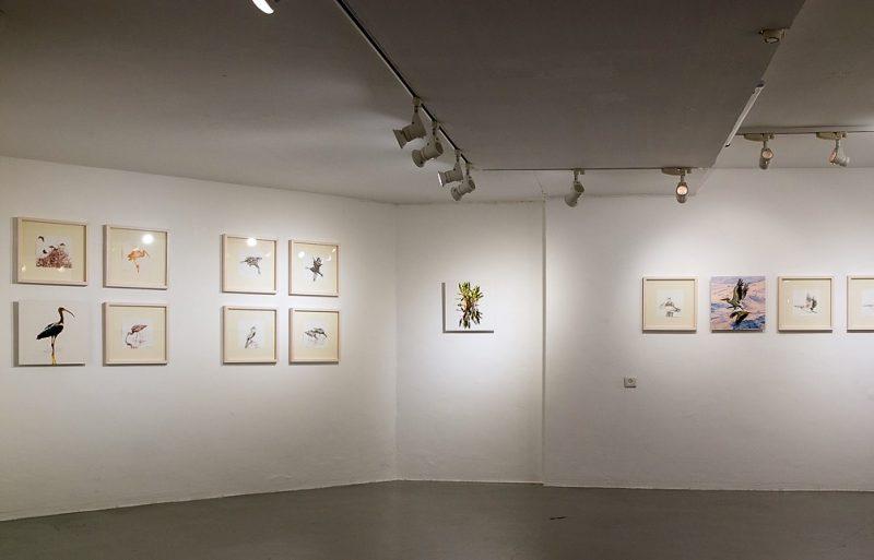 שלומי חגי, מראה הצבה מתוך התערוכה 'אקו', ינואר 2019. צילום : שירה טבצ'ניק