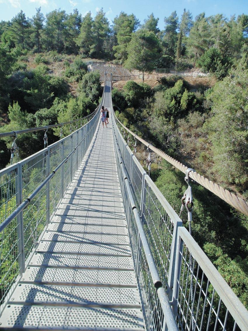 הגשר התלוי (צילום: יוסי מזור)