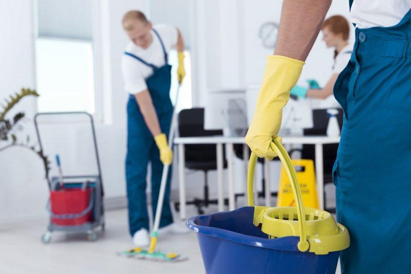 ינקו לכם את הבית עד גרגר האבק האחרון. תמונה: shutterstock