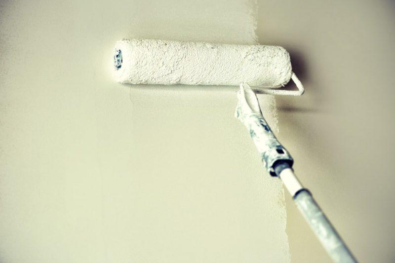 ריבודה דליה אחזקות - יעשו לכם פלאים בבית. תמונה: shutterstock