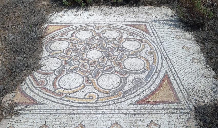 רצפת הפסיפס שנחשפה למרגלות התל (צילום: יוסי מזור)