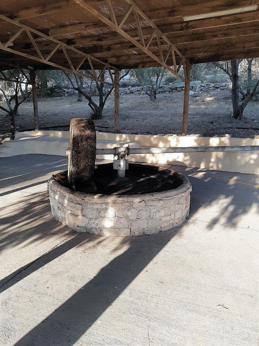בית הבד המשוחזר (צילום: יוסי מזור)