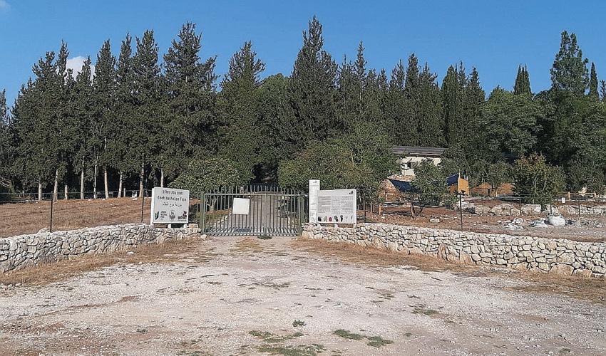 הכניסה לחוות עמק השלום (צילום: יוסי מזור)