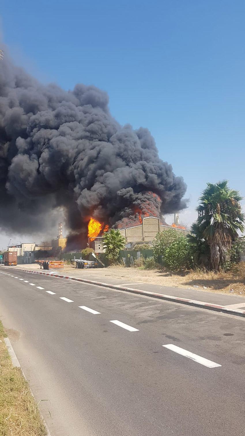 השריפה במפעל שמן (צילום: דוברות שירותי כיבוי והצלה, מחוז חוף)