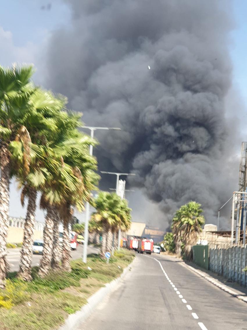 רכבי הכיבוי שפועלים בשריפה במפעל שמן