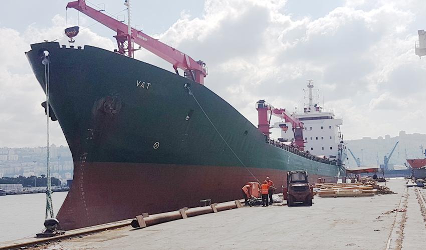"""האונייה """"VAT"""" עוגנת בנמל חיפה (צילום: ניר לוינסקי, המשרד להגנת הסביבה)"""