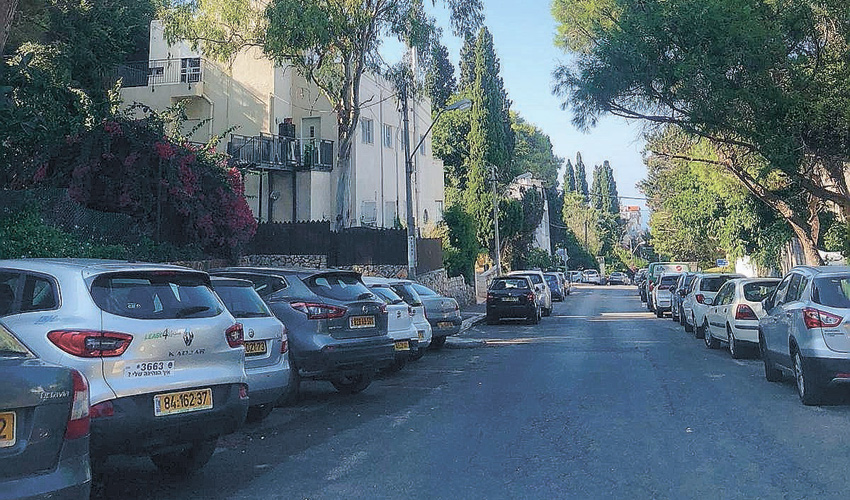 רחוב שושנת הכרמל