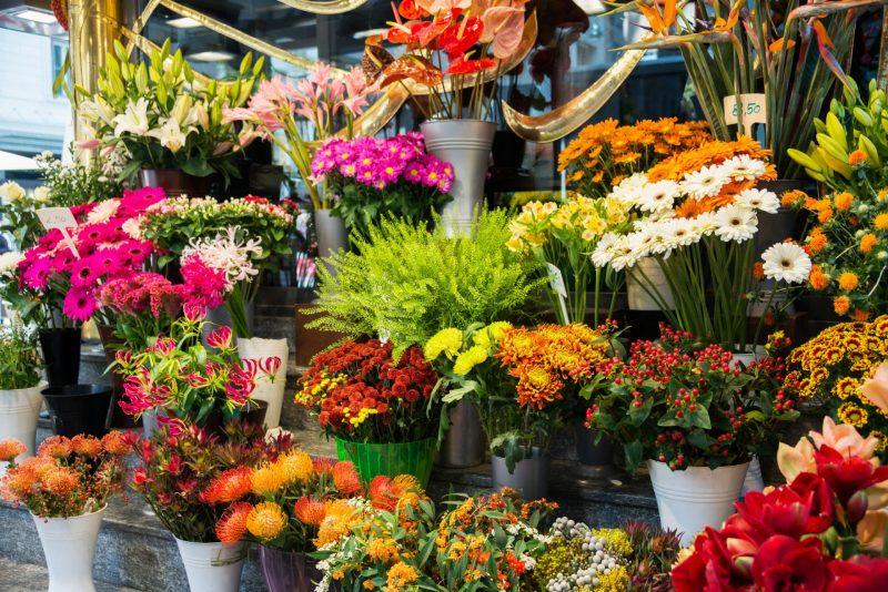 חנות פרחים בחיפה: אחוזת הפרחים הקסומה. תמונה ממאגר Ingimage