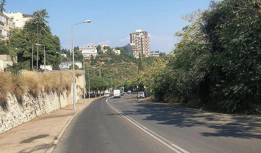 רחוב האסיף