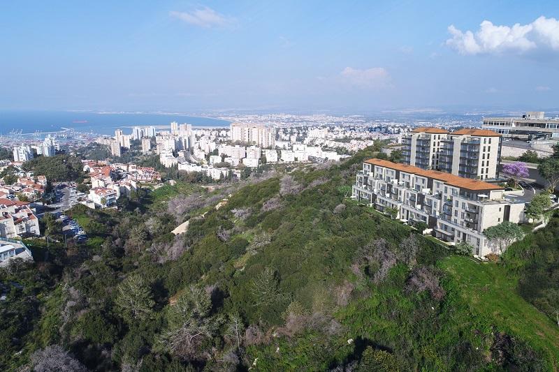 פרויקט חלומות גבעת זמר חיפה. הדמיה: OLIN