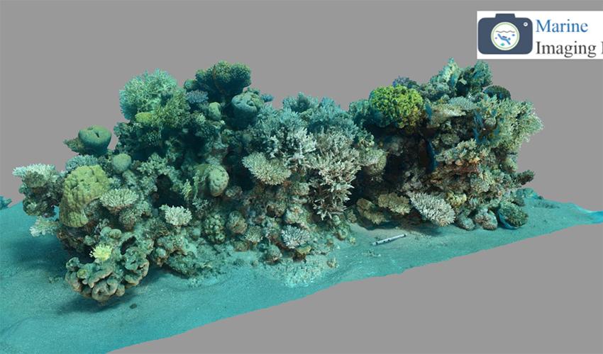 תמונה של המעבדה לדימות ימית באוניברסיטת חיפה (צילום: אוניברסיטת חיפה)