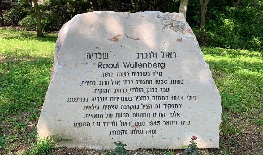 האבן לזכרו של ראול ולנברג. הקרבה עצמית עילאית (צילום: חגית הורנשטיין)