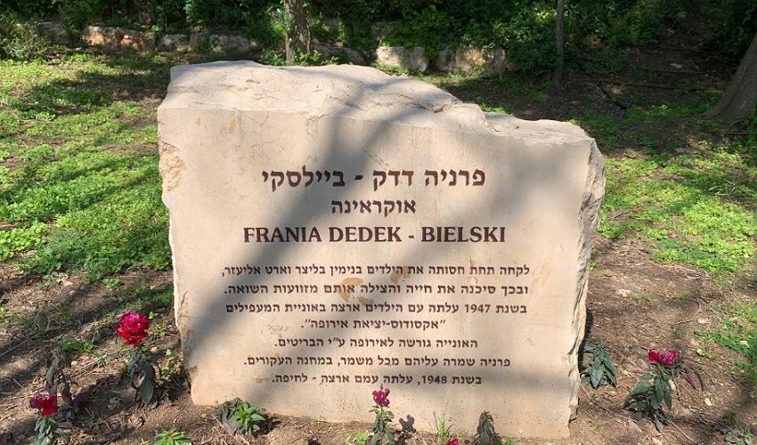 האבן לזכרה של פרניה דדק ביילסקי. דאגה לבנימין בליצר כאילו היה בנה שלה (צילום: חגית הורנשטיין)