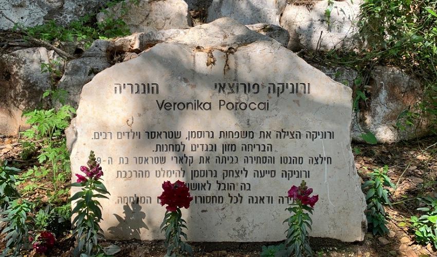 האבן לזכרה של ורוניקה פורוצאי. הצילה משפחות וילדים רבים (צילום: חגית הורנשטיין)