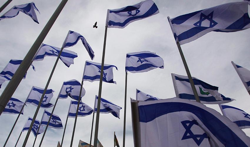 דגלי ישראל (צילום: AP)