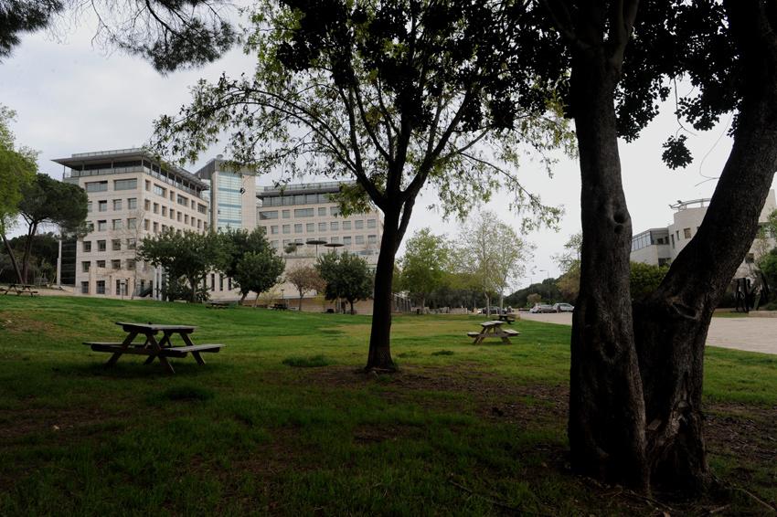 המדשאה בטכניון בלי סטודנטים (צילום: רמי שלוש)