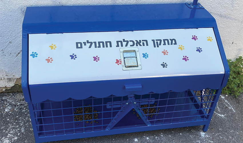 המתקן להאכלת חתולים (צילום: ראובן כהן, דוברות עיריית חיפה)