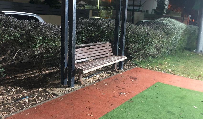 ספסל שבור בפארק צירי (צילום: אלי בן דיין)