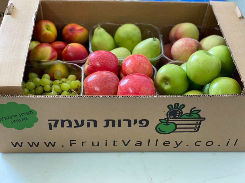 סופרמרקט אונליין: פירות העמק מגיעים אליכם מהעץ הישר לפתח הדלת. צילום: עודד גלזר