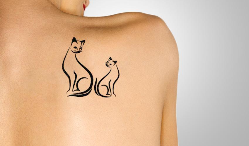 קעקוע של חתולים (צילום: א.ס.א.פ קריאייטיב/INGIMAGE)