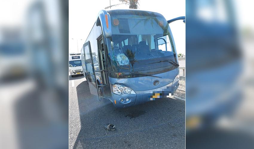 זירת התאונה בכניסה הדרומית לחיפה (צילום: דוברות איחוד הצלה)