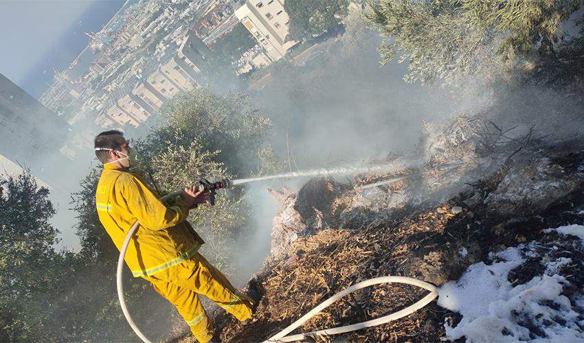 פעולות הכיבוי של השריפה בנוה שאנן (צילום: דוברות שירותי הכבאות וההצלה)