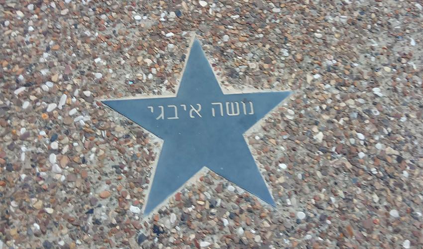 הכוכב הנושא את שמו של משה איבגי (צילום: יעקב סבן)