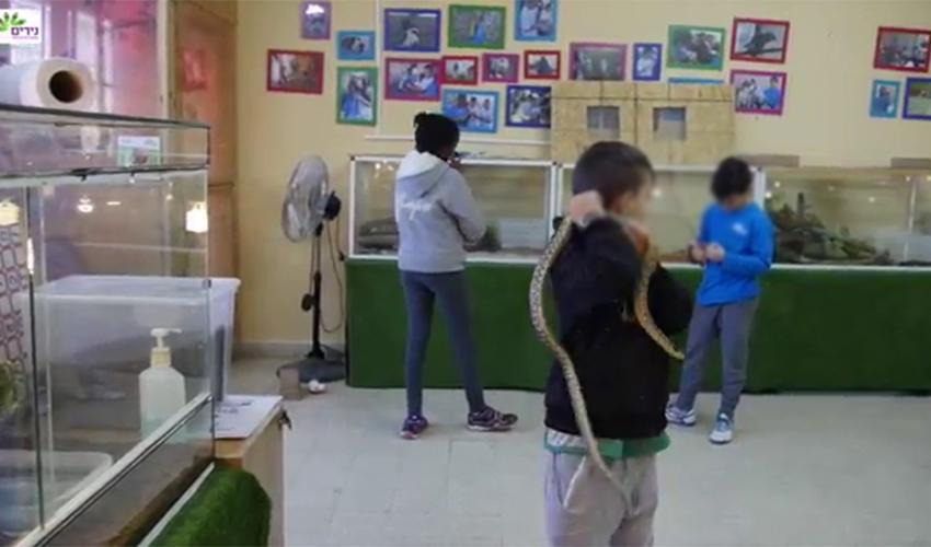"""מתחם הזוחלים בבית הספר נירים (צילום מתוך הסרטון """"נירים 2016"""" ביוטיוב)"""