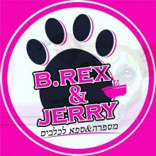 B.Rex&Jerry