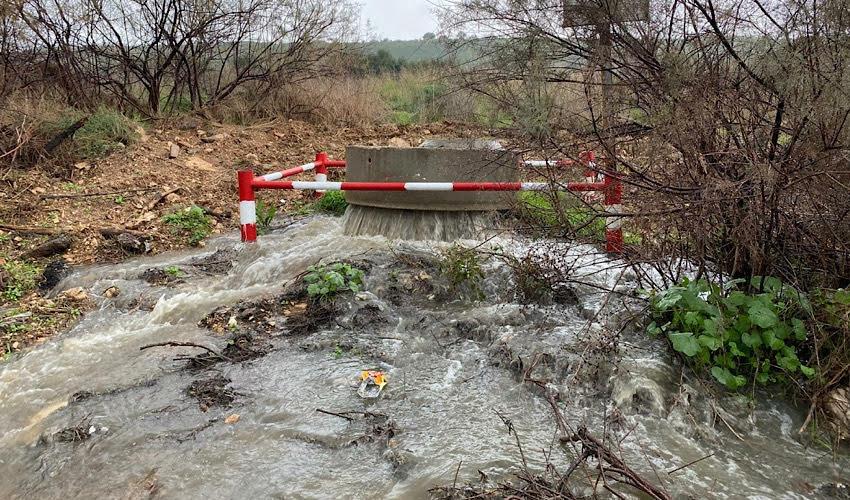 גלישת הביוב לנחל סעדיה (צילום: אלון בן מאיר, רשות נחל הקישון)