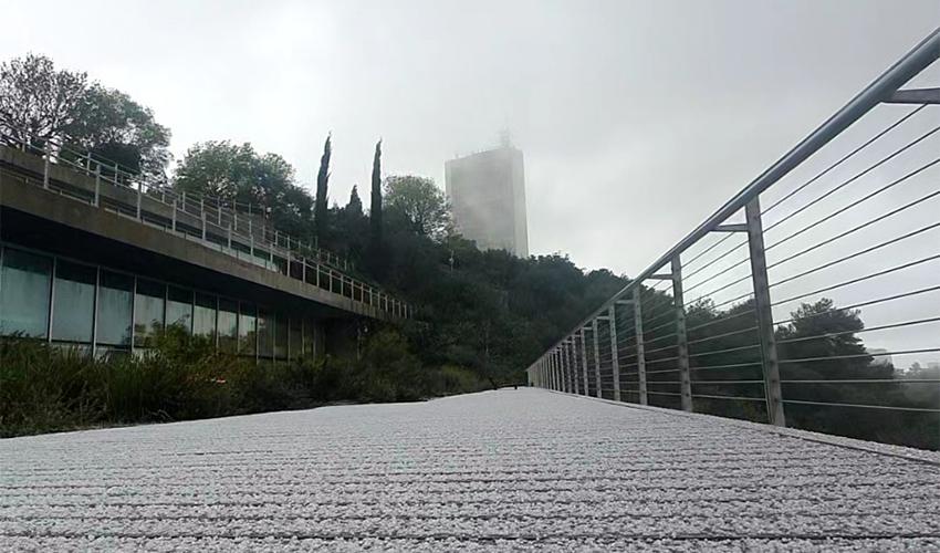 אוניברסיטת חיפה, היום (צילום: עדי חגג, אוניברסיטת חיפה)