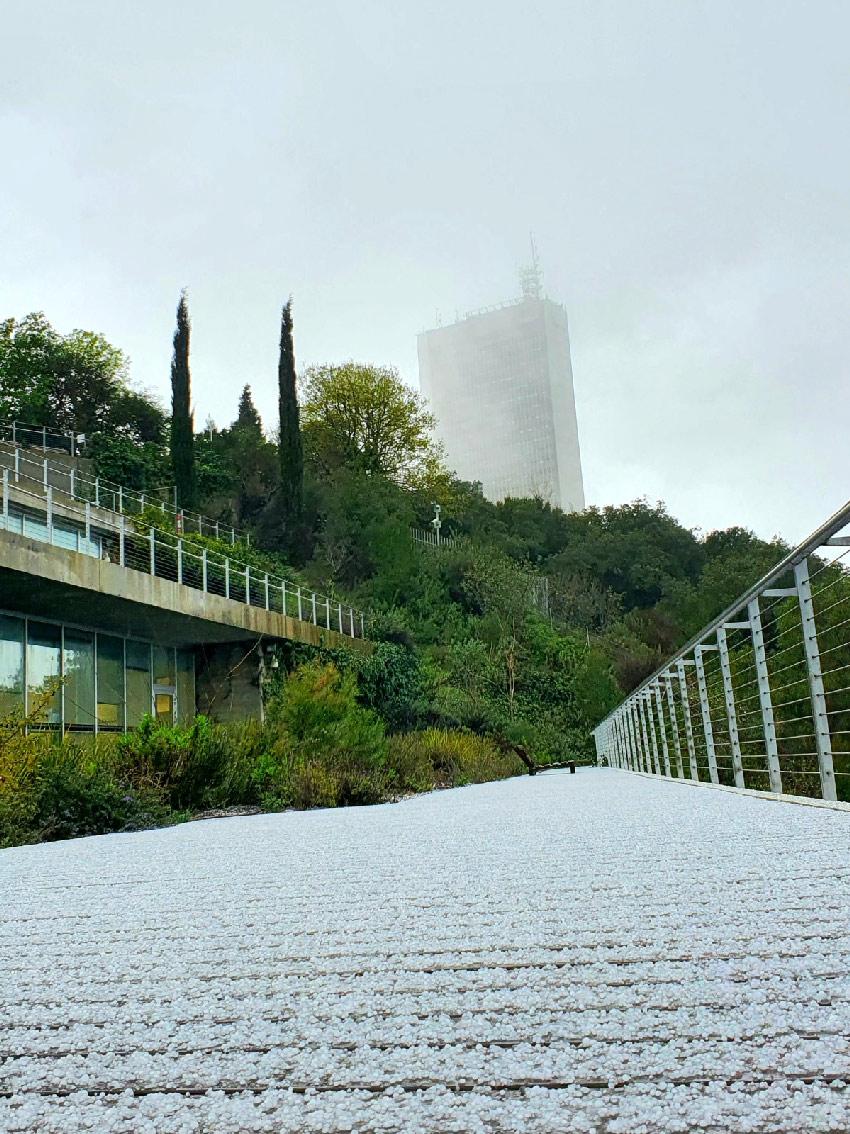 אוניברסיטת חיפה, היום (צילום: דוברות אוניברסיטת חיפה)
