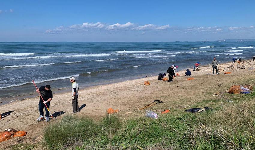 מתנדבים במבצע ניקיון החופים (צילום: חגית הורנשטיין)