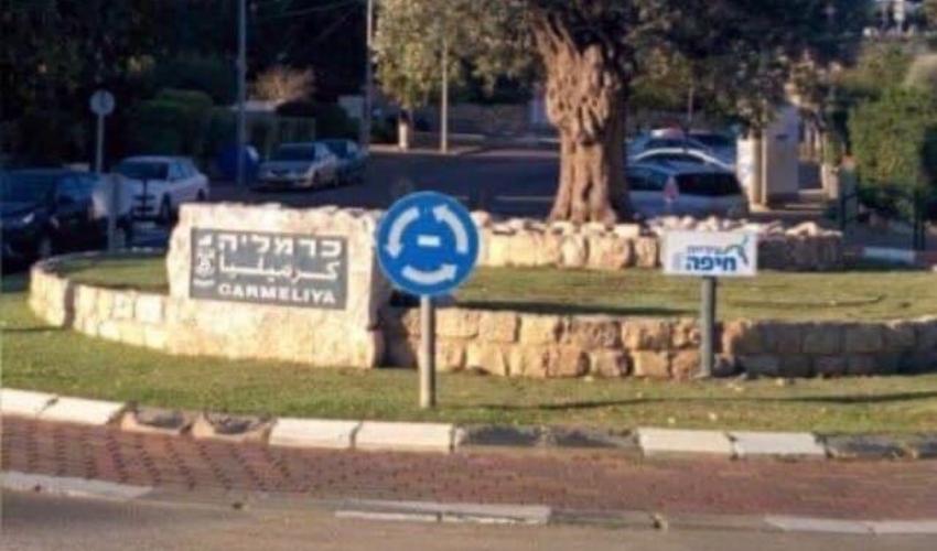 שכונת כרמליה (צילום: ערן שולמן)
