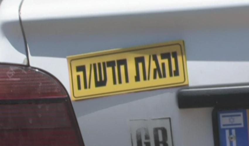 """""""חוסר יכולת להתמודד עם סיטואציות שונות של נהיגה"""". נהיגת צעירים (צילום: אור ירוק)"""