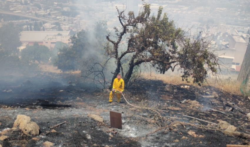 שריפת קוצים גדולה ברחוב יד לבנים (צילום: דוברות כבאות והצלה מחוז חוף)