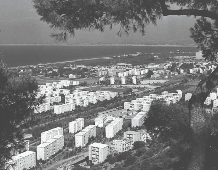 קרית אליעזר מכביש סטלה מאריס (צילום: באדיבות אברם קנטור)