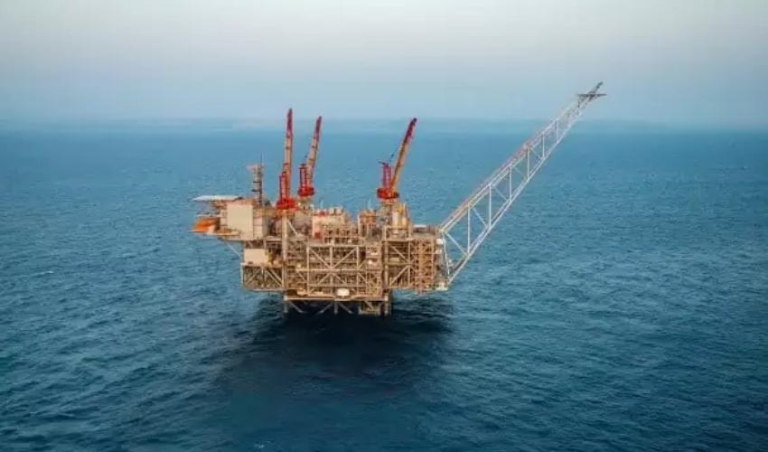 אסדת הגז לוויתן (צילום: אלבטרוס)