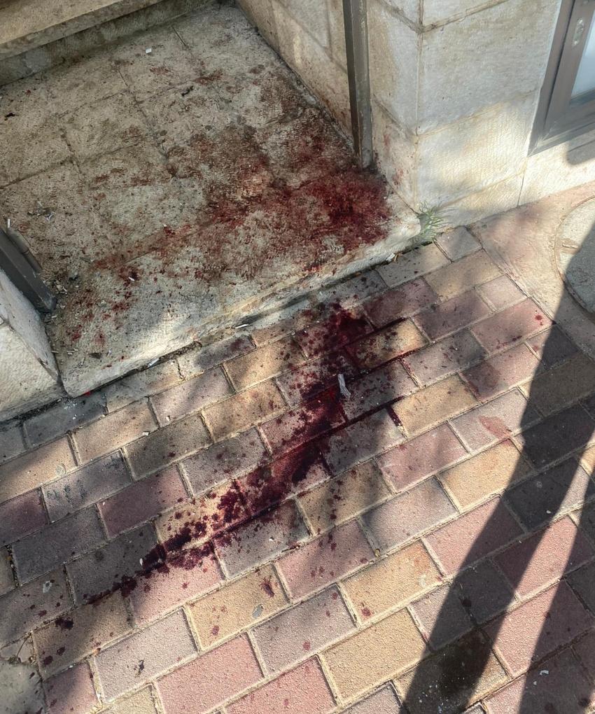 הדם של החזיר הפצוע