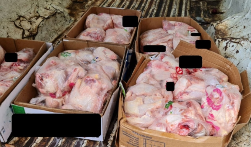 בשר העוף שהושמד (צילום: דוברות משרד הבריאות)